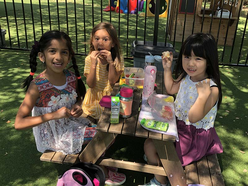 Picnic Lunch Gallery